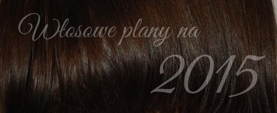 10 włosowych planów na 2015 rok