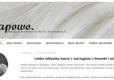 Moje ulubione… blogi włosowe