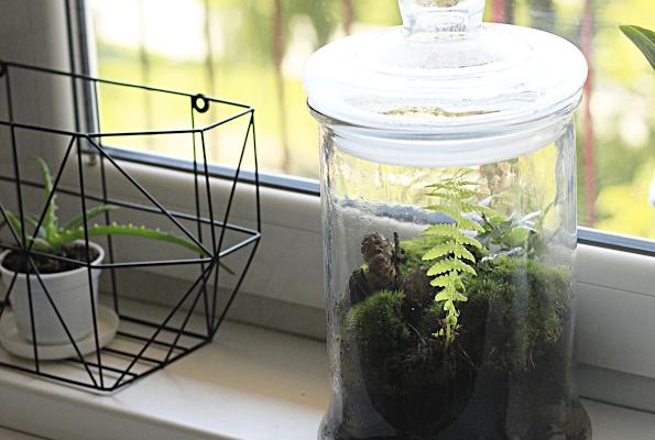 DIY: Las w słoiku